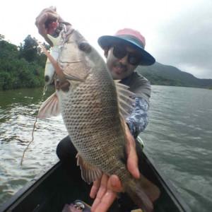 GW釣果報告 マングローブの釣り 出ました60cmオーバーの画像